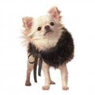 Горжетка меховая для собак CHARLOTTE'S DRESS «Abbraccio»