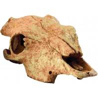 Hagen убежище-декор череп бизона для террариума