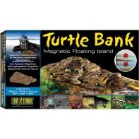 Hagen черепаший берег Turtle Island средний