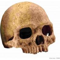 Hagen убежище-декор череп примата для террариума