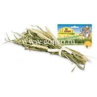 JR FARM 02094 Букет зерновых культур д/грызунов 25г