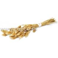 JR FARM 12715 Ветка канареечного семени 20г