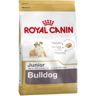 Bulldog Junior